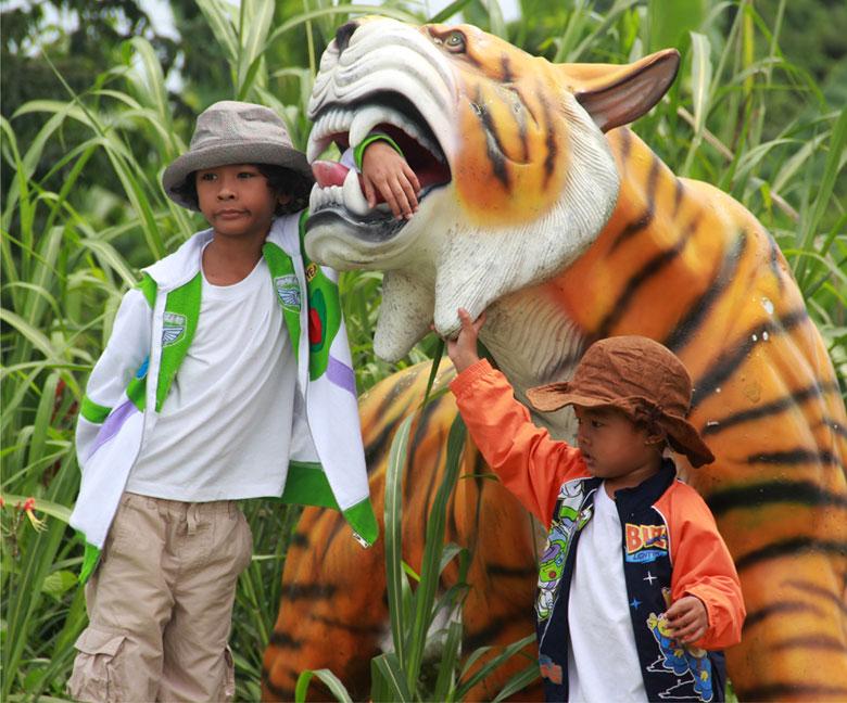 haciendas de naga tiger